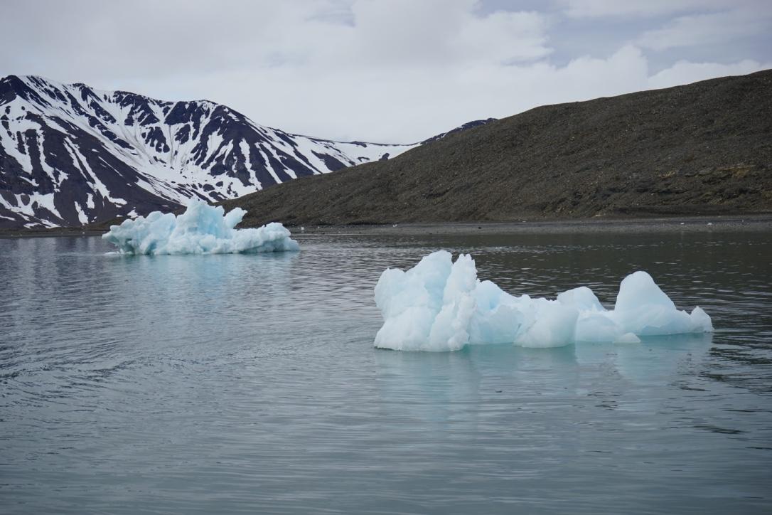 Iceberg - growler