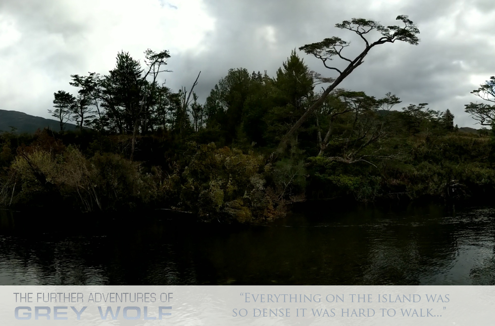 5-the-trees-and-plants-the-further-adventures-of-grey-wolf-feat-fpb-78-2-grey-wolf-ii